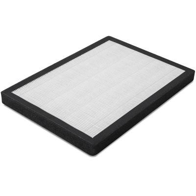 Filtro HEPA (efficienza di filtrazione del 95%) per AirgoClean 100 E